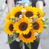 HC027-Sunflower Mẫu 3